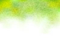Japanese paper fresh green background [3683513] Japanese