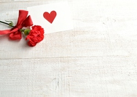 One wheel of carnation and message card Stock photo [3688561] Carnation