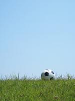 Soccer ball Stock photo [3800862] Soccer