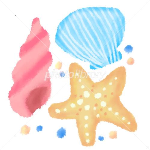 貝殻 イラスト素材 3906941 フォトライブラリー Photolibrary