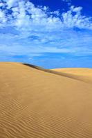 Wind ripples carved into scales clouds and dunes that were drawn on the autumn sky Stock photo [3991686] Tottori