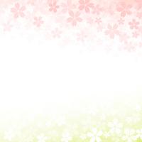 Cherry background [3995916] Background