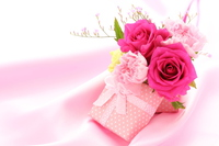 Flowers and gifts Stock photo [3996673] Flower