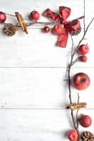 Red apples and Christmas ornament Stock photo [4071616] Christmas