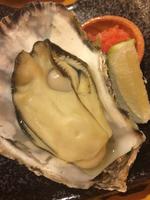 Hiroshima oyster Stock photo [4149589] oyster