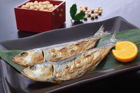 Setsubun sardine and beans Stock photo [4152445] Traditional