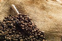 Coffee bean Stock photo [4152661] coffee
