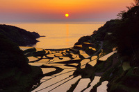 Sunset Hamanoura rice terraces Stock photo [4155646] Saga