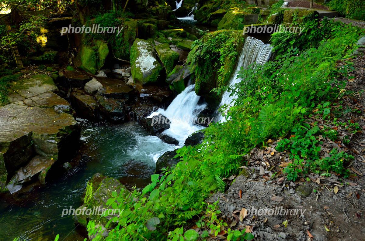 関吉の疎水溝の画像 p1_1