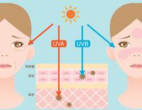 Ultraviolet rays [4251173] Ultraviolet