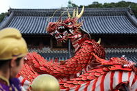 Dragon dance Stock photo [4303181] KUNCHI