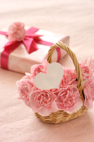 Carnation and gift box and a heart-shaped paper pink background Stock photo [4304125] Carnation