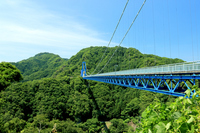 Dragon large suspension bridge Stock photo [4385114] Ibaraki
