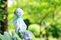 Teru Teru Bozu and hydrangea Stock photo [4470204] rainy