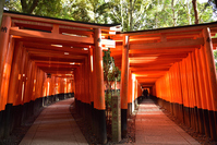 Fushimi-Inari Thousand torii Stock photo [4550948] Fushimi