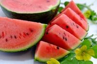 watermelon Stock photo [4551648] watermelon