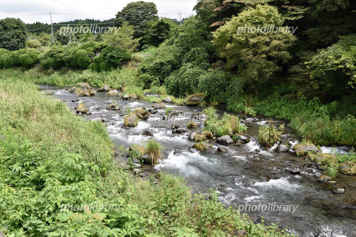 田舎の小川の流れ 写真素材 [ 4614001 ] - フォトライブラリー ...