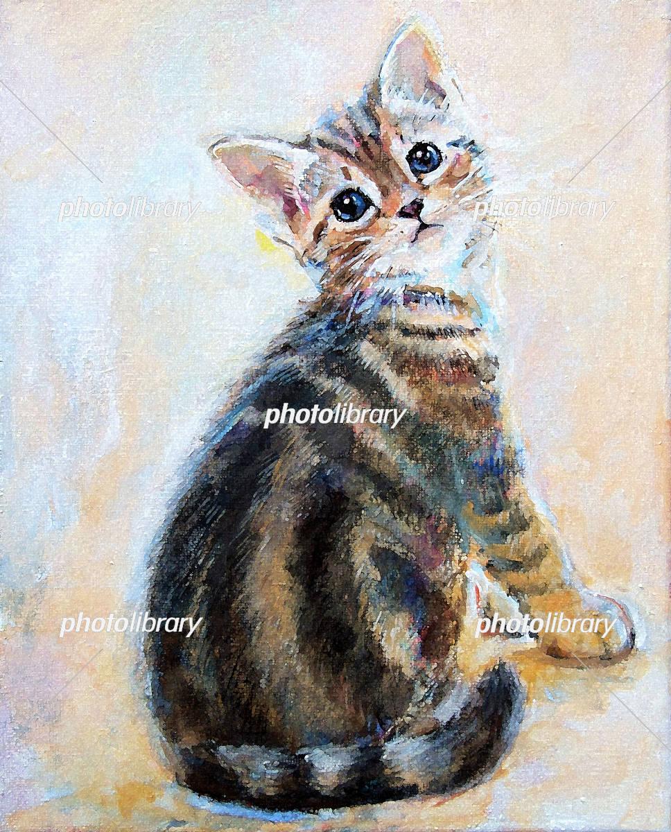 振り向く子猫 アメショ イラスト素材 4618520 フォトライブラリー