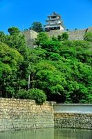 Marugame Castle Stock photo [4616096] Shikoku