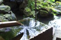 Tsukubai Stock photo [4677708] garden
