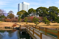 Hama Rikyu Gardens Stock photo [4678449] Hama