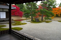 Autumn leaves of Lushan mountain temple garden Stock photo [4749956] Lushan