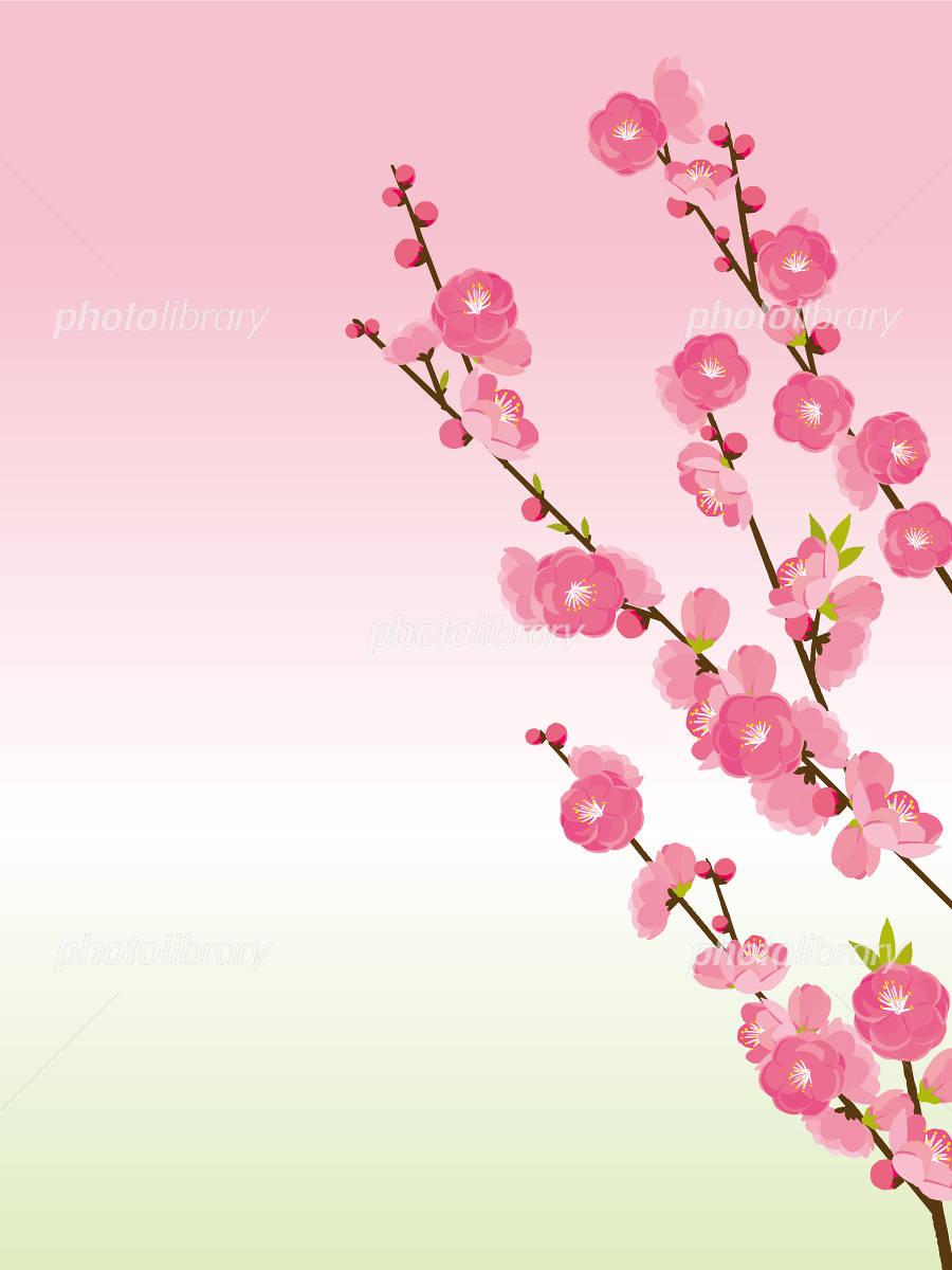 桃の花 イラスト素材 4826012 フォトライブラリー Photolibrary