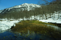 Okumota Nature Park Stock photo [5032838] Water