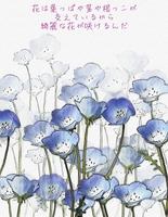 花の絵とメッセージ