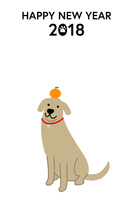 New Year cards 2018 Dog and the oranges [5133836] New