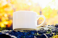 Coffee in autumn outdoor  Photo