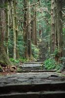 Nachisan Daimon slope Stock photo [185030] Kumano