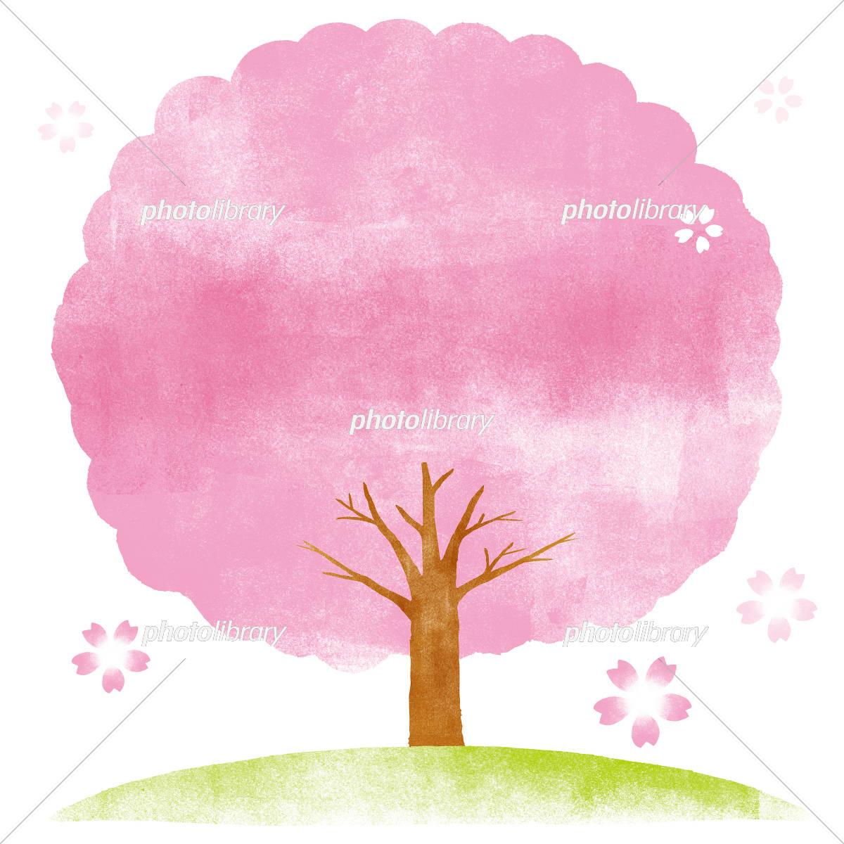 桜の木 水彩イラスト イラスト素材 5820573 フォトライブラリー