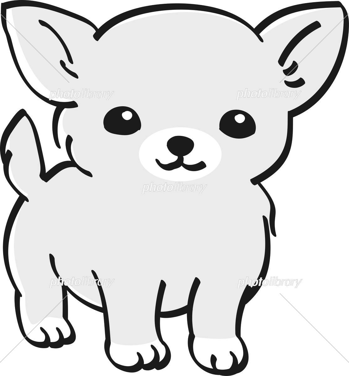 チワワ モノクロ かわいい 子犬 人気 犬 イラスト素材 フォトライブラリー Photolibrary