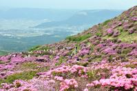 Miyama Kirishima Aso Sensui Gorges Stock photo [817334] Aso
