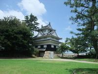 Yoshida Castle Stock photo [820197] Yoshida