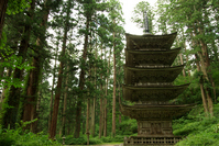 Haguro five-storied pagoda Stock photo [893548] Thousand
