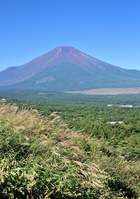 Fuji from the panorama platform Stock photo [986783] Mt.