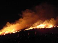 Nara Wakakusayama mountain firing of Stock photo [993449] Nara