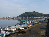 Fishing port Stock photo [1096741] Fukuoka