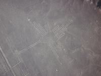 Nazca Lines Stock photo [1109213] Nazca
