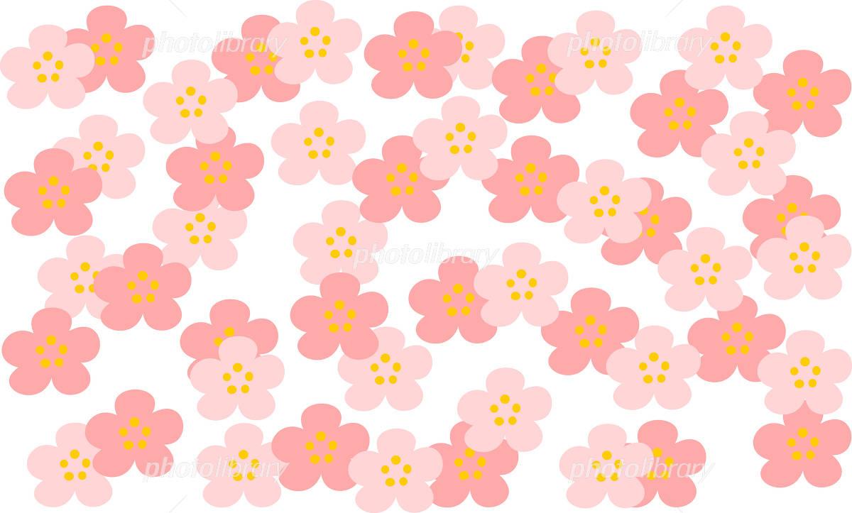 桃の花 柄 壁紙 イラスト素材 フォトライブラリー Photolibrary