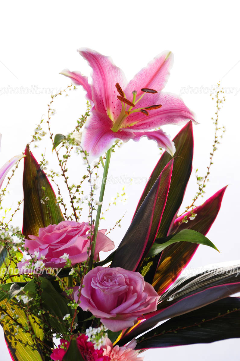 Lilies and roses Photo