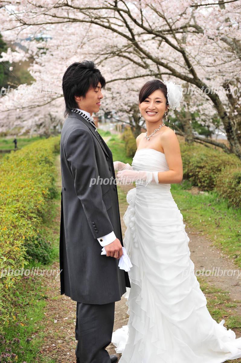 Wedding under the cherry tree Photo