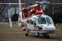 Great East Japan Earthquake disaster prevention helicopter Stock photo [1292436] Helicopter
