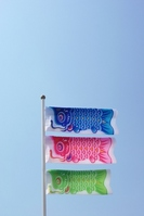 Carp streamer Stock photo [1297869] Carp
