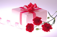 Carnation and gift Stock photo [1300306] Mother's