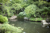 Japanese garden Stock photo [1301656] And