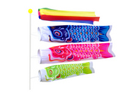 Carp streamer Stock photo [1302980] Carp