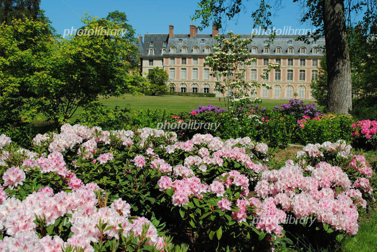 Palace and Park of Fontainebleau Photo